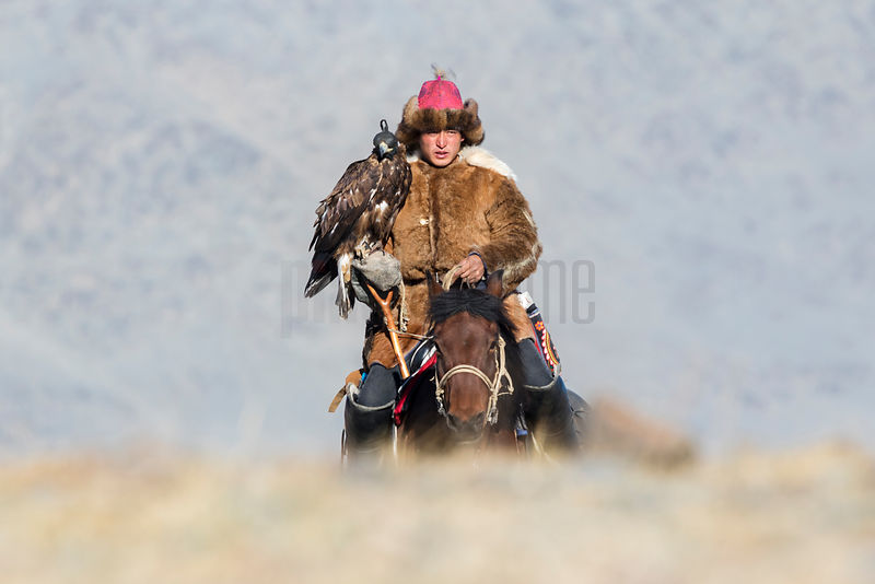 A Kazakh Golden Eagle Hunter Approaches the Festival Site across the Gravel Plain