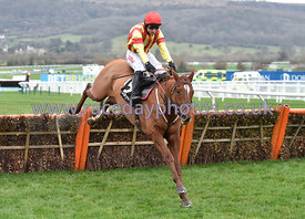 12:15 - The Ballymore Novices' Hurdle  photos