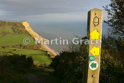 Signpost marking public footpath, with Dunscombe Cliff behind. Salcombe Hill, near Sidmouth, south Devon, England