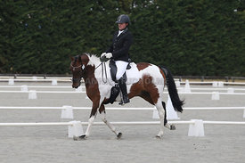 Canty_Dressage_Champs_071214_005