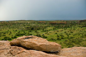 Trees dot the plain below Mapungubwe Hill, site of the capital of the earliest known kingdom in sub-Saharan Africa that flourished from 900AD to 1300AD.