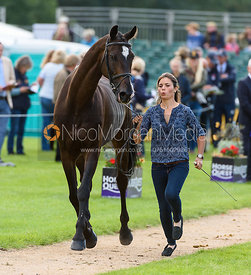 Clelia Casiraghi and VERDI at the trot up, Land Rover Burghley Horse Trials 2018