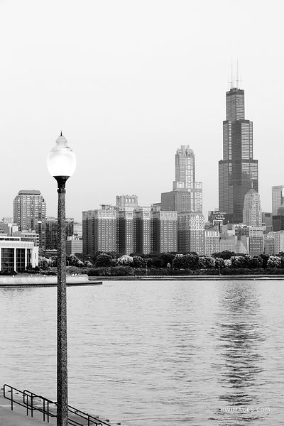 WILLIS TOWER CHICAGO SEARS TOWER CHICAGO DOWNTOWN BLACK AND WHITE VERTICAL