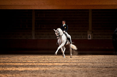 Concours de Dressage International CDI 3* - 4* - 5* photos