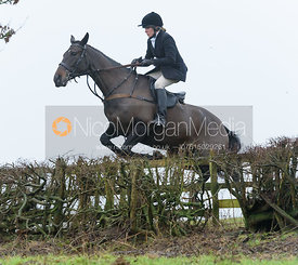 Hilary Butler jumping a hedge above Withcote