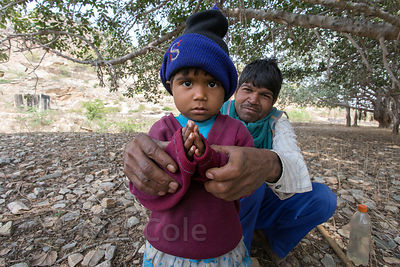 A man and his son pray under a large fig tree, which is considered sacred, Udaipur Kalan village, Rajasthan, India