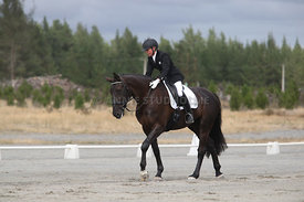 SI_Festival_of_Dressage_310115_Level_1_Champ_0702