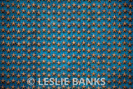 Star Wall in the World War II Memorial