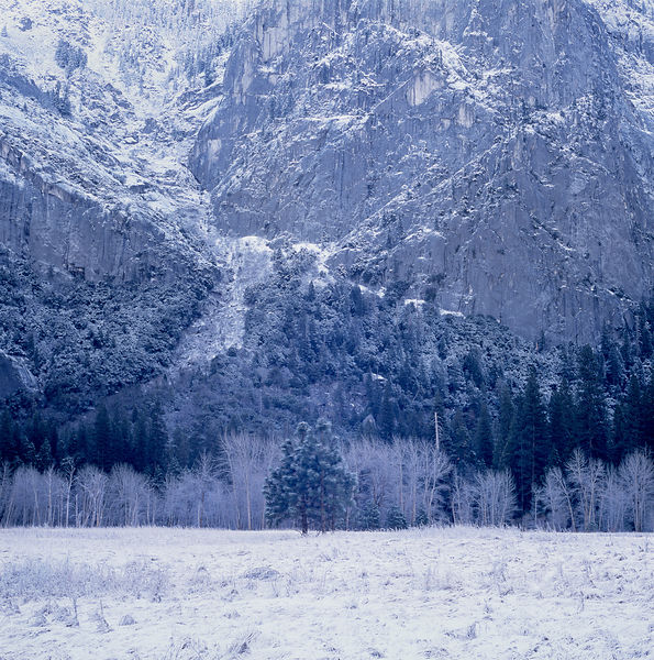 037-California_CA141051_Yosemite_Snow_Storm_001_Preview