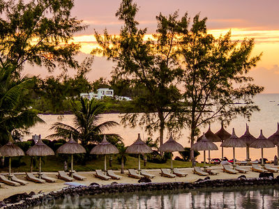 Row of sunbeds and green coconut palm straw sunshades on golden sands with an orange sunset behind