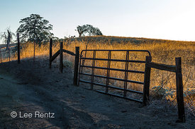 Fence and Gate at Millerton Lake State Recreation Area