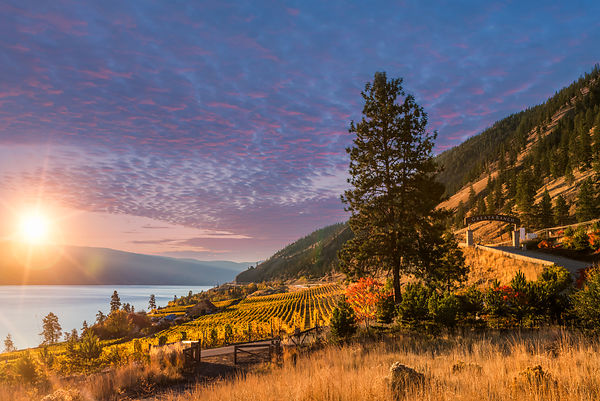 Summerland Region photos