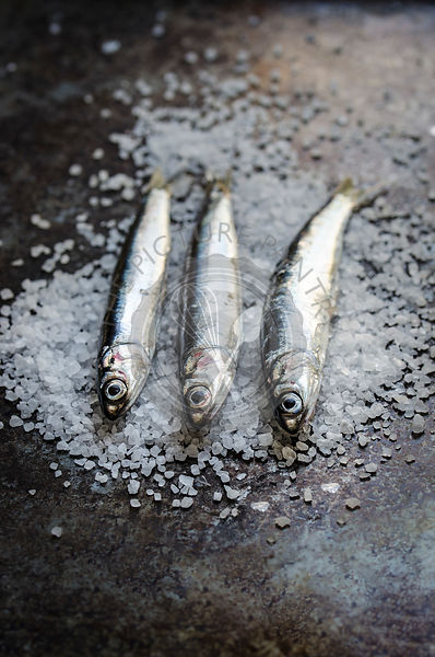 Three Anchovies