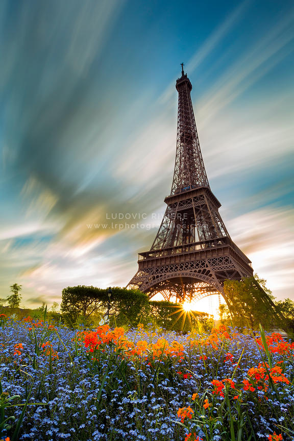 photo tour eiffel et les fleurs du champs de mars lr photographies photographe r union. Black Bedroom Furniture Sets. Home Design Ideas