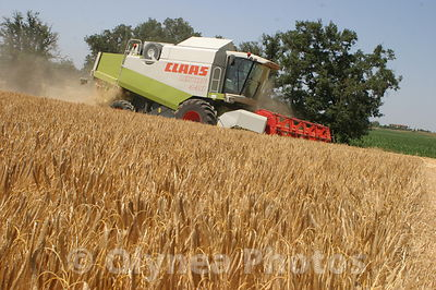 Agriculture photos, agence,images,
