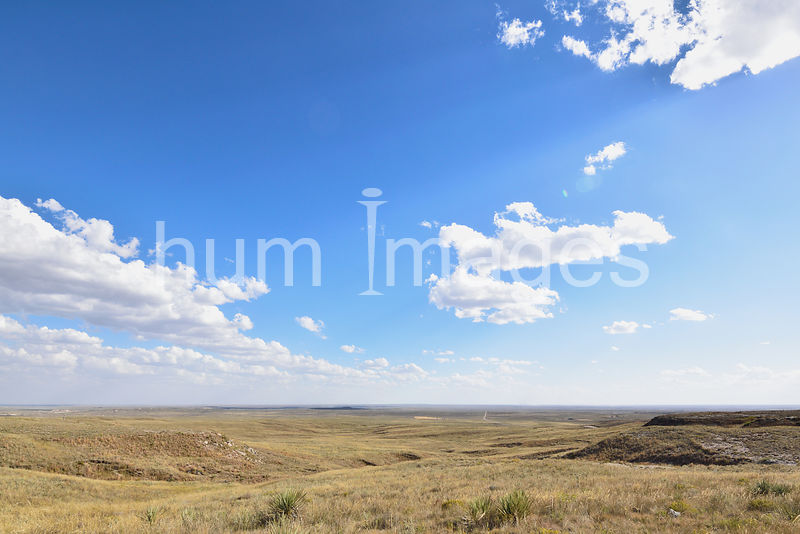 Open land and big sky in northern Colorado.
