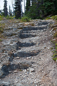 Carved Rock Steps along Royal Basin Trail