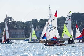 Optimist GBR 5570, 20160918099