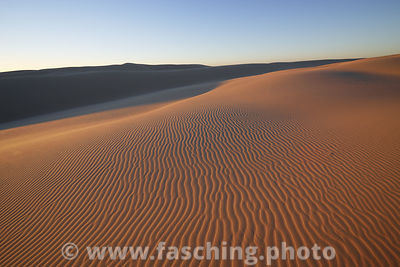 sand dunes at Port Stephens, Booti Booti NP