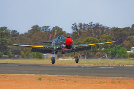 P40 Kittyhawk on take off