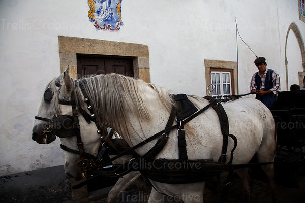 A Portuguese man steers a carriage pulled by two horses