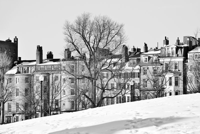 BEACON HILL FROM PUBLIC GARDEN BOSTON MASSACHUSETTS WINTER BLACK AND WHITE