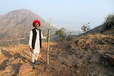 Goat herder in the Aravali Range at the highest point in the Pushkar/Ajmer region, Leela Seori, Rajasthan, India