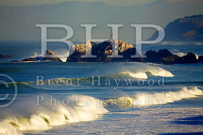 San-Diego-Stock-Photography-Photographer_IMG_9978