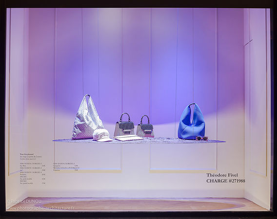 Vitrine Galeries Lafayette Paris par Tom Greyhound