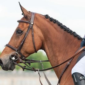 CSI Chantilly Avril 2014