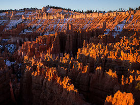 Bryce_Nation_Park_245