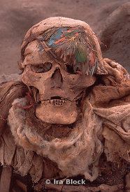 skeleton of Peruvian mummy.