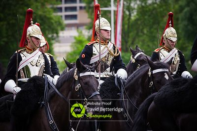Trooping_The_Clolour_2016-237