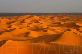 Dunes and Sahara desert