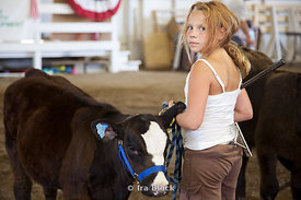 A girl taking care of a cow at the Rice County Fair, Faribault, Minnesota.