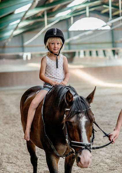 Young Danish girl riding a horse 2