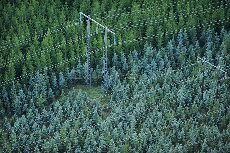 Aerial view of electricity pylons with wires crossing over a Norway spruce (Picea abies) plantation, Uppland, Sweden, September 2008