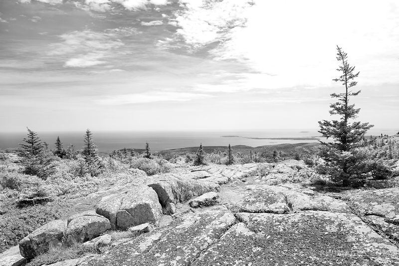 VIEW FROM CADILLAC MOUNTAIN ACADIA NATIONAL PARK MAINE BLACK AND WHITE