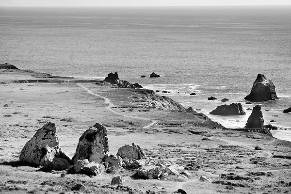 SONOMA COAST STATE PARK CALIFORNIA BLACK AND WHITE