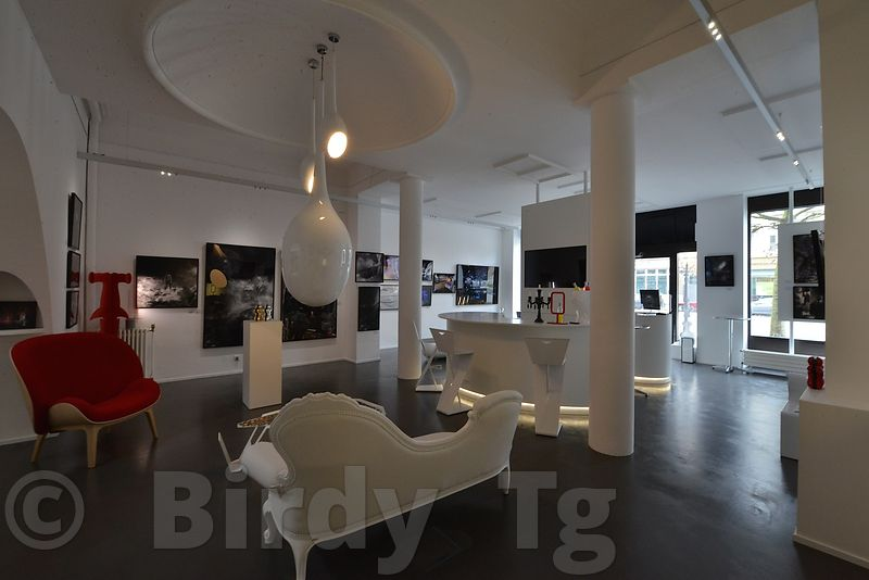 Birdy Tg exhibition at Celina Gallery - LUXEMBOURG