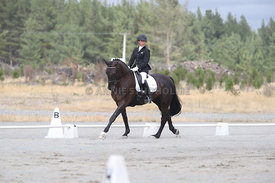 SI_Festival_of_Dressage_310115_Level_1_Champ_0690