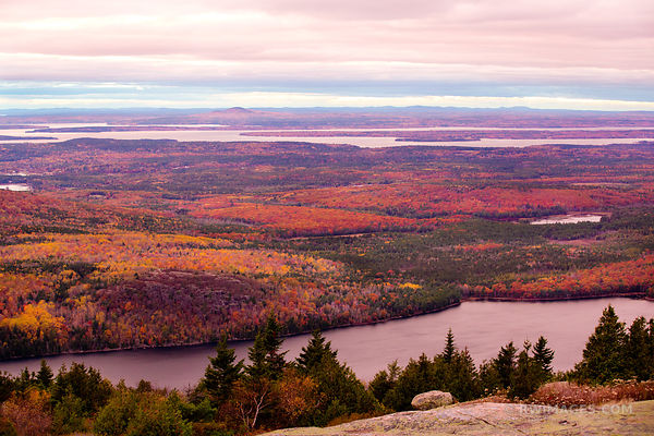 VIEW FROM CADILLAC MOUNTAIN AT DUSK ACADIA NATIONAL PARK MAINE