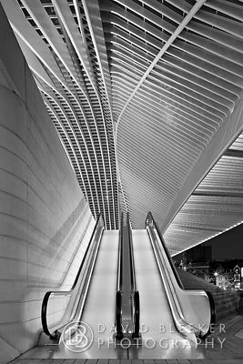 Escalators at Liège Guillemins
