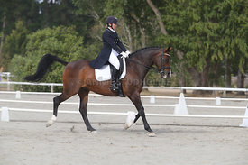 SI_Festival_of_Dressage_300115_Level_9_SICF_0451