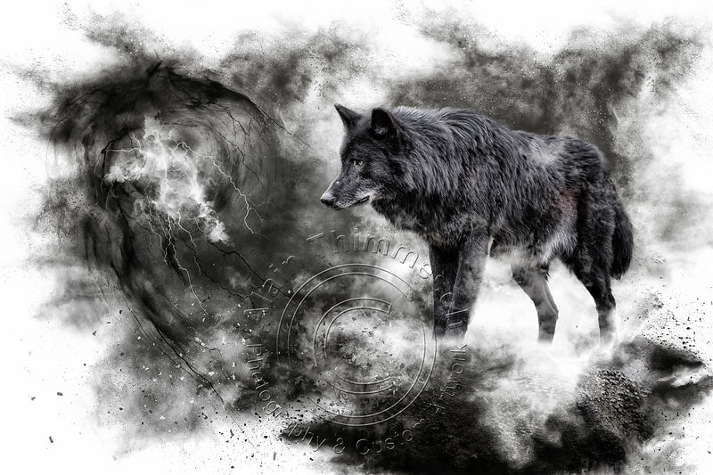 Art-Digital-Alain-Thimmesch-Loup-9