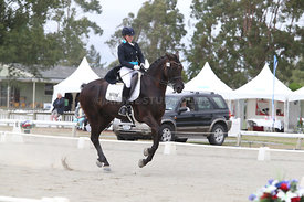 SI_Festival_of_Dressage_310115_Level_6_7_MFS_0649