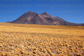 Miñiques volcano and puna grassland, Los Flamencos National Reserve, Region II, Chile