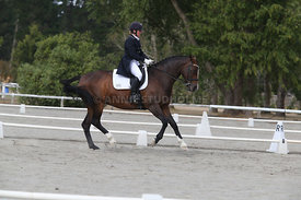 SI_Festival_of_Dressage_300115_Level_9_SICF_0471
