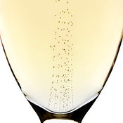 Bubbles in champagne