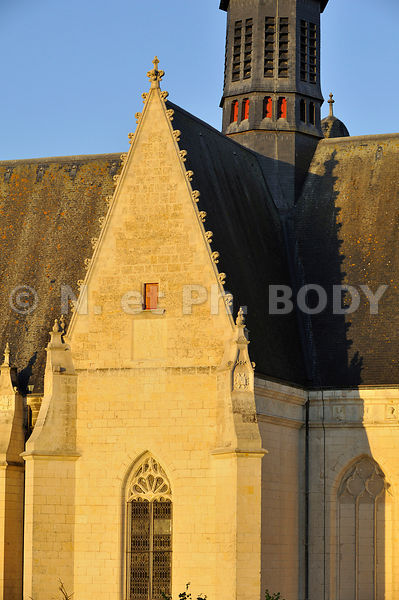COLLEGIALE DE MONTRESOR, INDRE ET LOIRE, FRANCE//COLLEGIATE CHURCH OF MONTRESOR, INDRE ET LOIRE, FRANCE